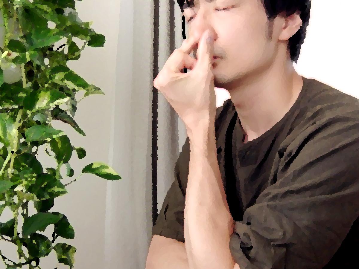 ナディーショーダナ・プラーナヤーマ(片鼻呼吸法)〜「無意識」をコントロールする自律神経〜