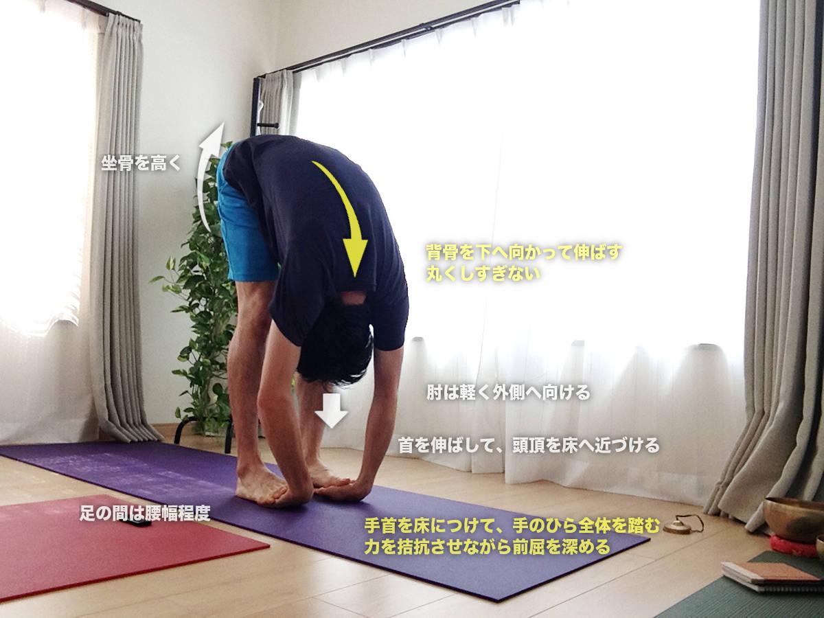 パダハスターサナ(パーダハスターサナ・手と足で引っ張り合う立位前屈のポーズ) 〜座り仕事で固まった体を一気に伸ばす〜