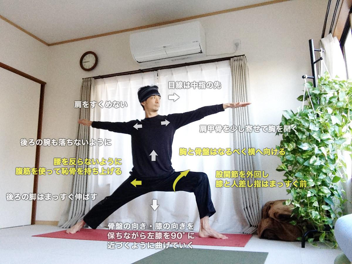 ヴィラバドラーサナⅡ(ウォーリアⅡ・戦士のポーズⅡ・英雄のポーズⅡ)〜股関節を柔軟に、肩周りを解放、内面の力強さを引き出す〜
