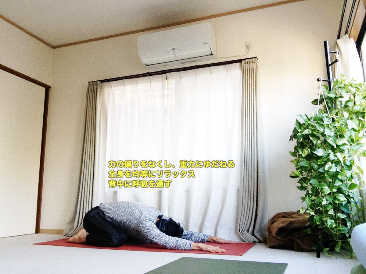 バラーサナ(チャイルドポーズ)〜リラックスポーズの代表、自分に合った形で〜