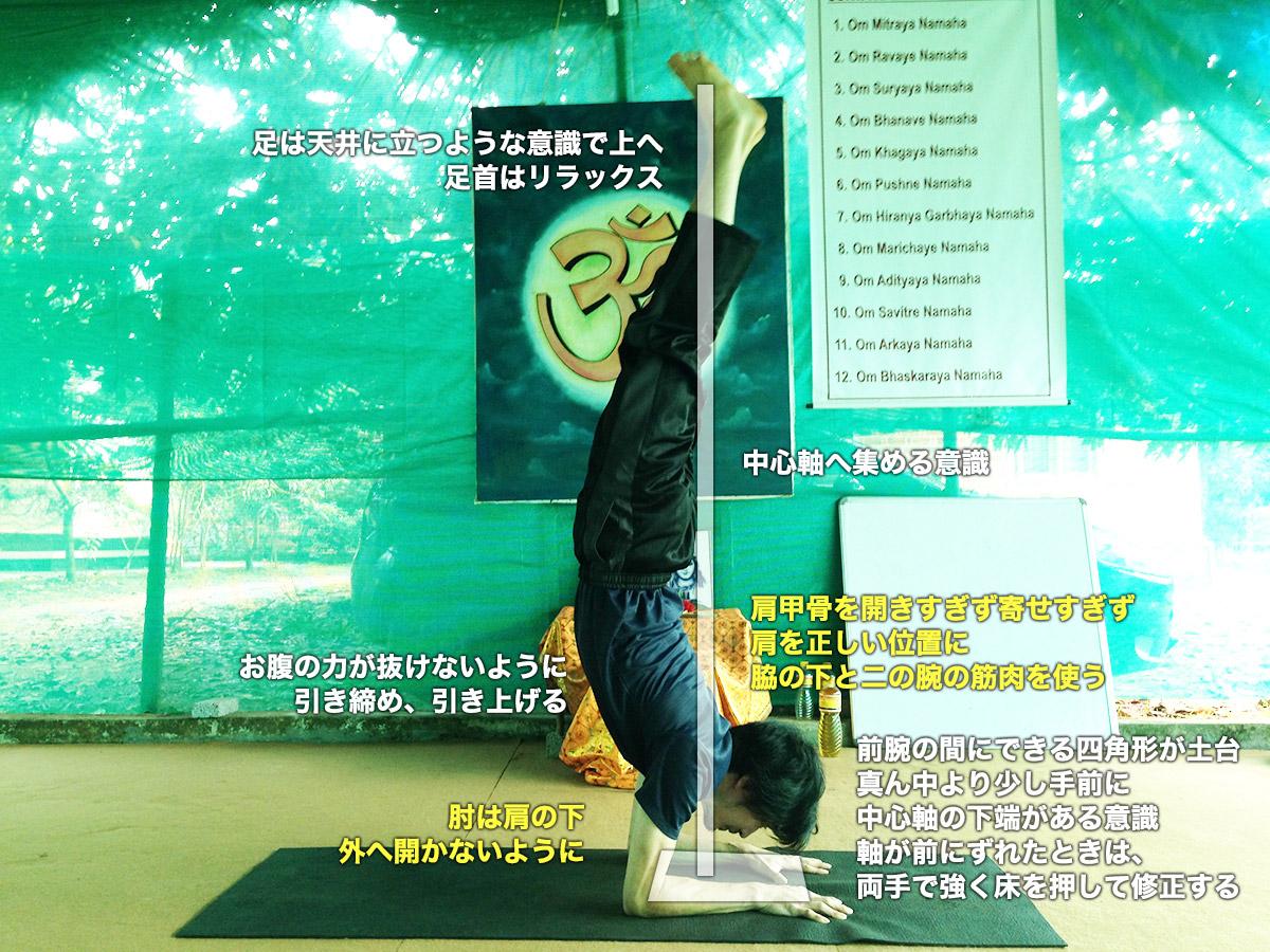 ピンチャマユラーサナ(孔雀の羽のポーズ)〜引き締まった上半身と二の腕をつくる〜