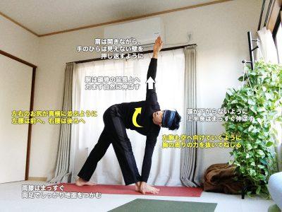 パリヴリッタトリコーナーサーナ(ねじった三角のポーズ)〜骨盤矯正、体幹を強く柔軟に〜