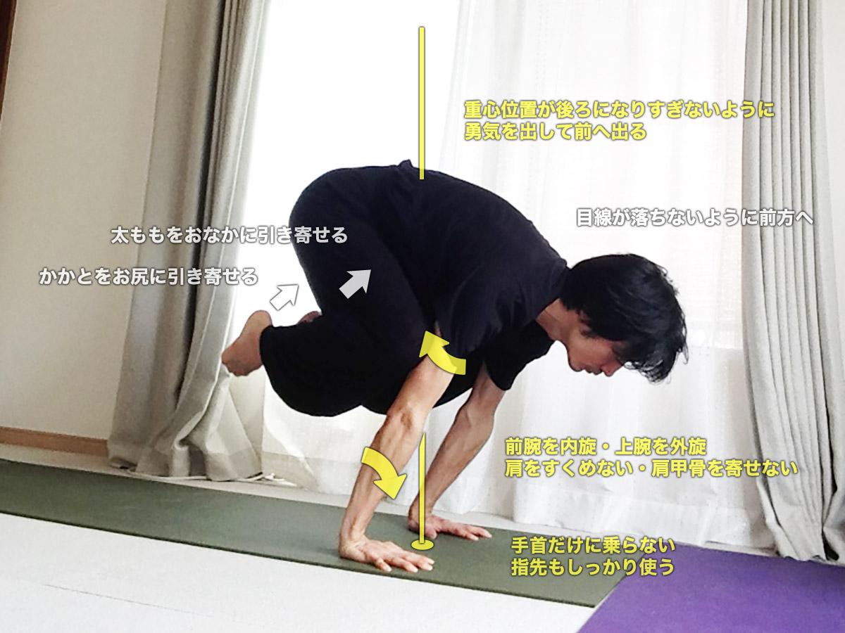 バカーサナ(鶴のポーズ・バカアサナ)〜肩と体幹を正しく使い、バランス感覚・集中力UP〜