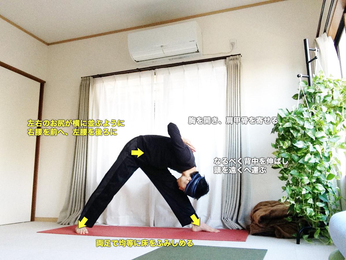パールシュヴォッターナーサナ(体側を強くのばすポーズ)〜骨盤調整・背骨をまっすぐに・太もも裏をのばす〜