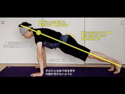 プランクポーズ(パラカーサナ・クンバカーサナ・板のポーズ・腕立てのポーズ)〜二の腕・肩甲骨と体幹を強く正しく使う〜