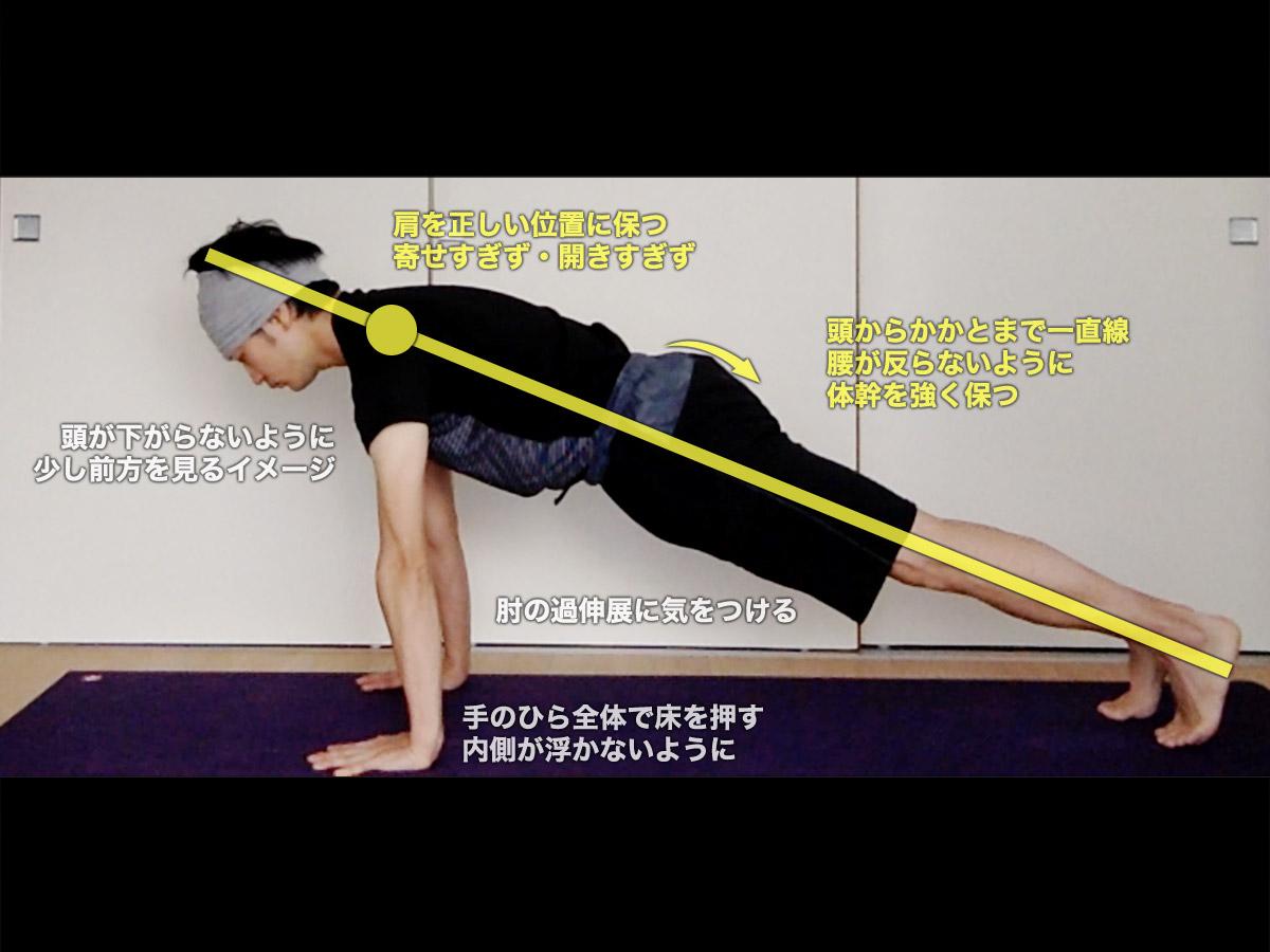 プランクポーズ(パラカーサナ・クンバカーサナ・板のポーズ)〜二の腕・肩甲骨と体幹を強く正しく使う〜
