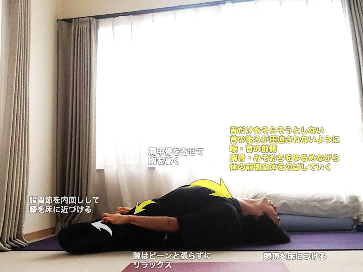 パドママツヤーサナ(蓮華座を組んだ魚のポーズ)〜体の前面を解放、股関節を柔軟に〜