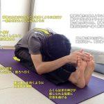 パスチモッターナーサナ(パスチモッタナーサナ・背中側を強く伸ばす前屈ポーズ)〜ふくらはぎや太もも裏だけでなく、背骨や脇も伸ばす〜