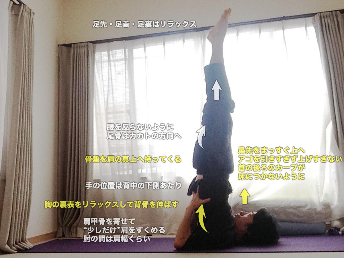 サーランバサルヴァンガーサナ(ショルダースタンド・肩立ち)〜首と肩を正しい位置関係に、全身の血行を促し、脚のむくみをとる〜