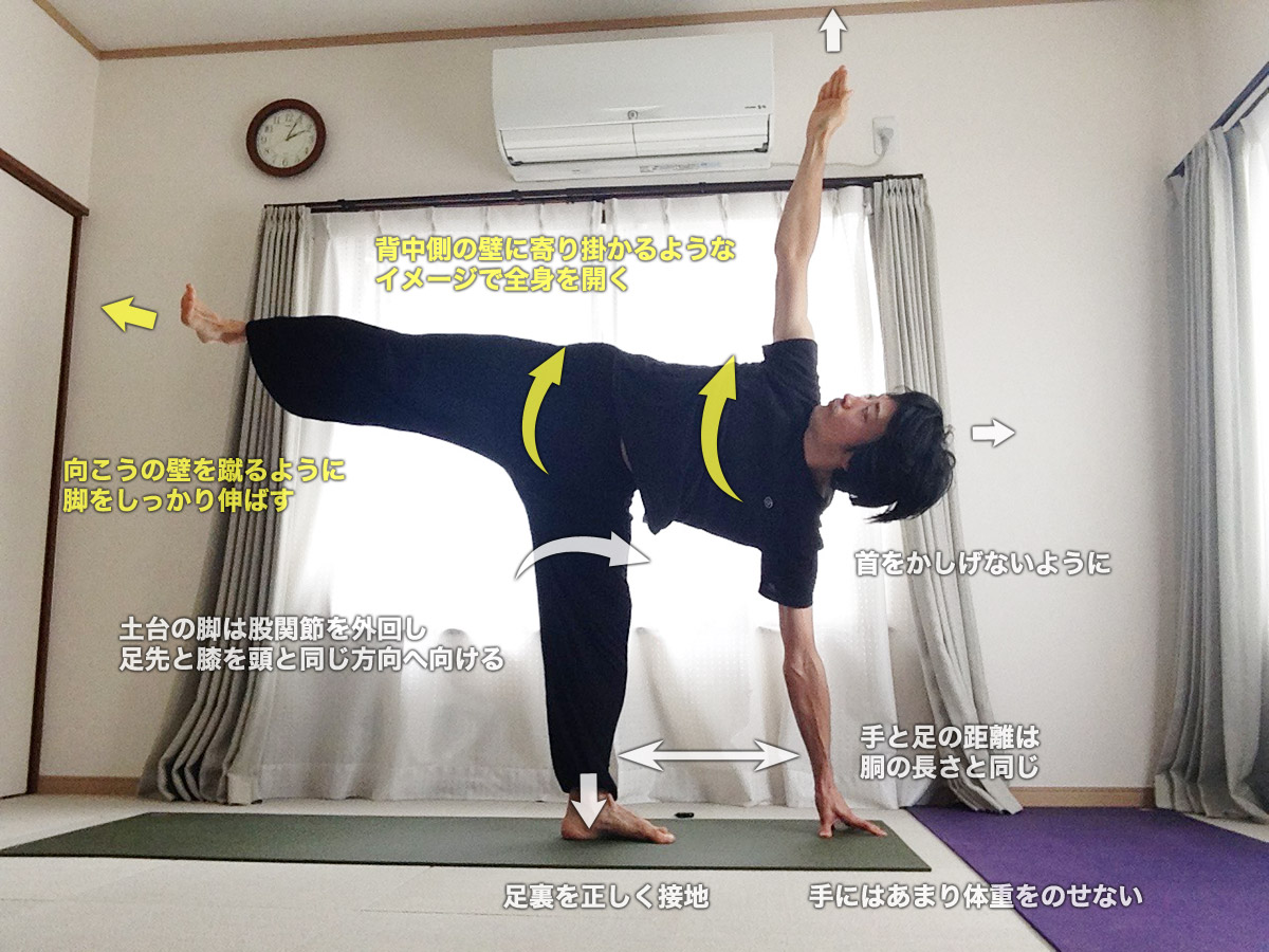 アルダチャンドラーサナ(半月のポーズ)〜体全体のバランスと全身ストレッチ・体幹強化〜