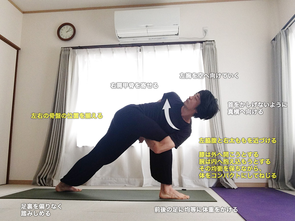 バッダパリヴリッタパールシュヴァコーナーサナ(背中で手をつないでねじった体側を伸ばすポーズ)〜ねじりとバランス・体幹とハムストリングスの強化〜