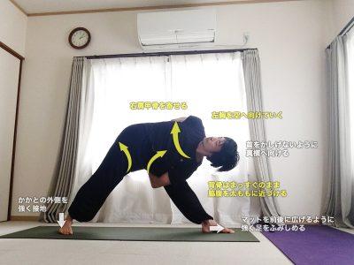 バッダトリコーナーサナ(背中で手をつかんだ三角のポーズ)〜肩甲骨・ハムストリングス・股関節外旋の柔軟性〜
