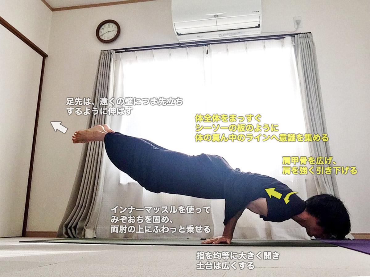 マユラーサナ(マユーラーサナ・孔雀のポーズ)〜強力な解毒効果・内臓を活性化・体幹強化〜