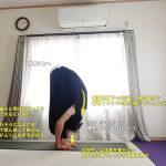 ウッターナーサナ(強い前屈のポーズ)〜前屈の基礎、ハムストリングスを伸ばし腹筋を強化〜
