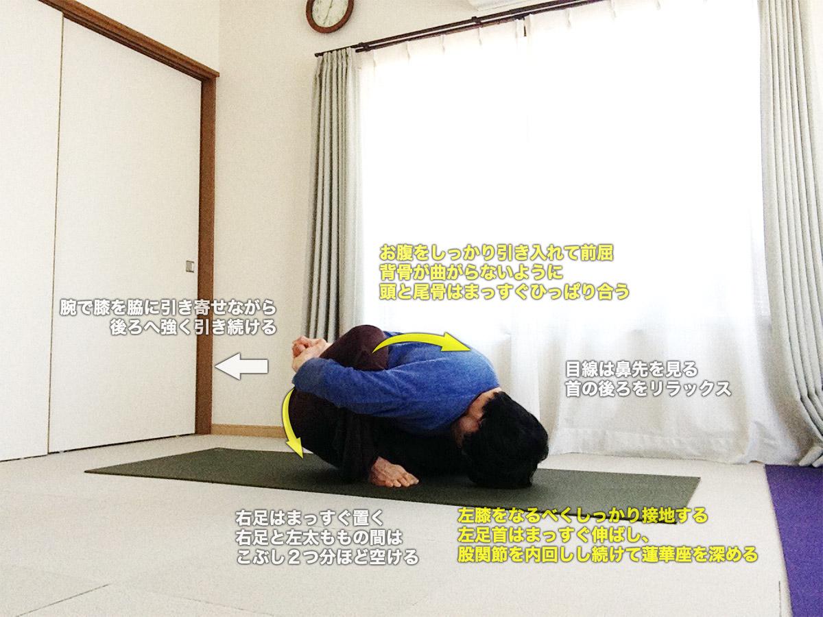 マリーチアーサナB(賢者マリーチのポーズB)〜蓮華座を深め、股関節を柔軟に、内臓マッサージ〜