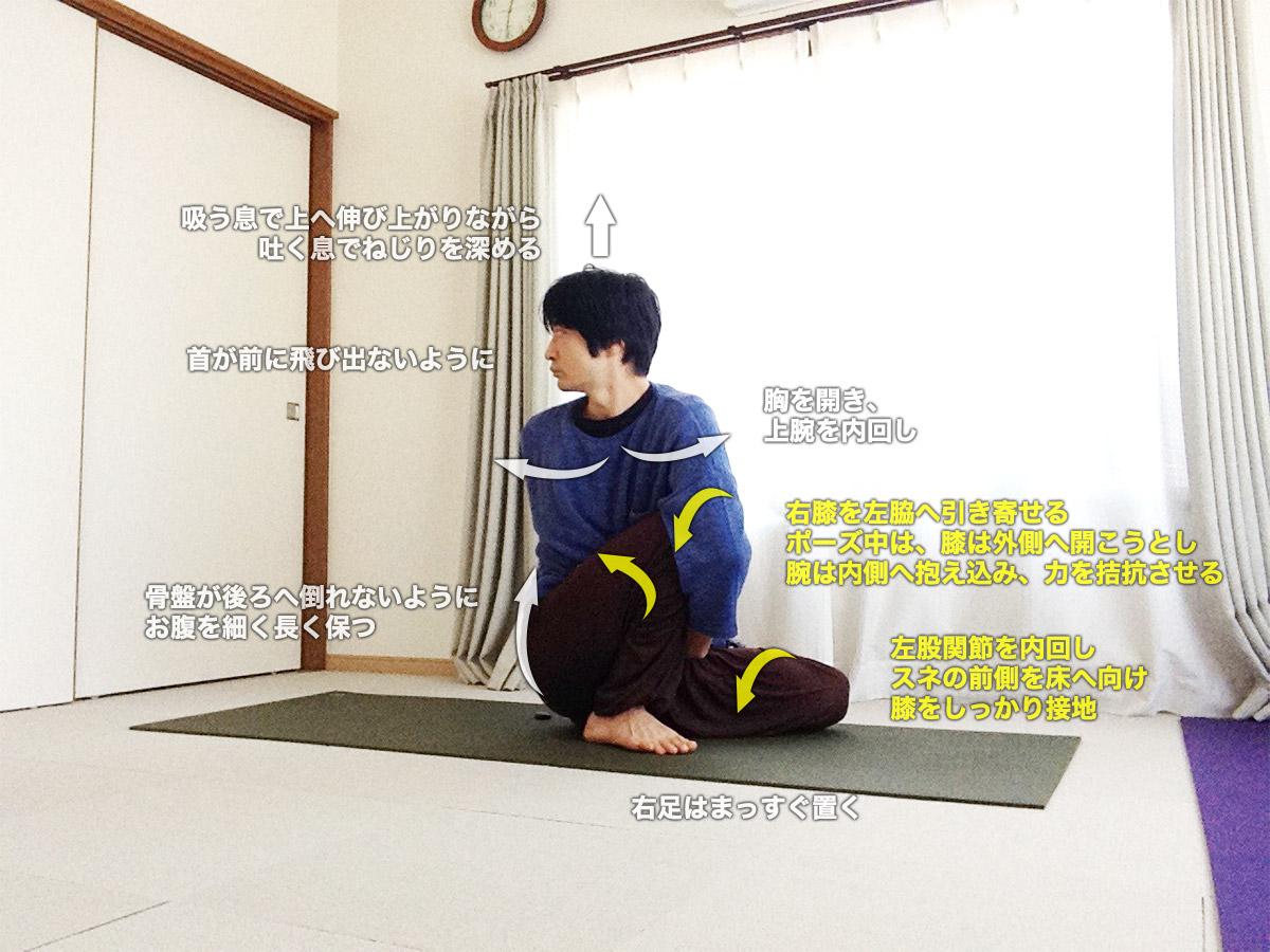 マリーチアーサナD(賢者マリーチのポーズD)〜蓮華座と深いねじりで内臓を活性化〜