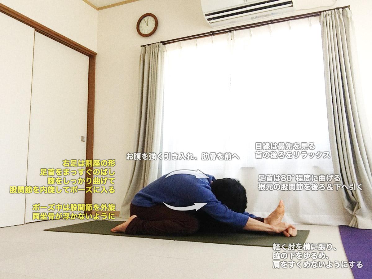 トリアンガムカエーカパーダパスチモッターナーサナ(ティリヤンムカイカパダパスチモッターナーサナ)〜腹筋を強く使いながら、太ももと股関節を柔軟に〜