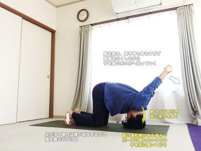 シャシャンカーサナ(うさぎのポーズ・ササンガーサナ)〜頭スッキリ、自律神経を整え、肩こりや眼精疲労にも〜