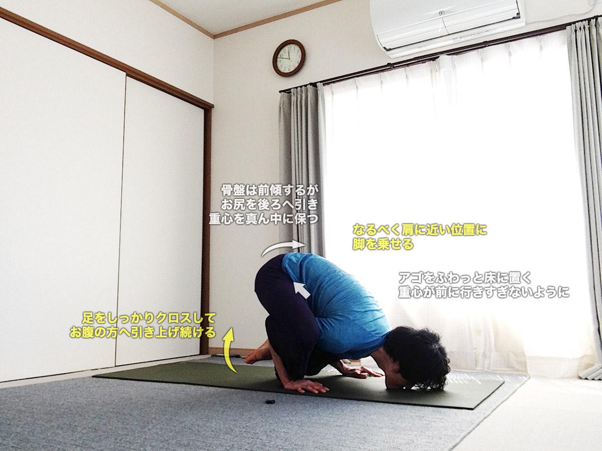 ブジャピダーサナ(肩を圧すポーズ・ブジャピーダーサナ)〜股関節の柔軟性、腕・肩の正しいアラインメント〜