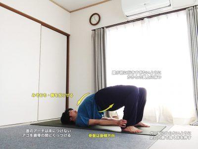 カンダラーサナ(肩のポーズ)〜ハムストリングスを強く、足を踏みしめて胸を開く〜