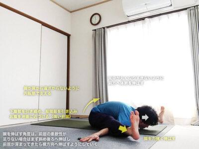 クルマーサナ(亀のポーズ・クールマーサナ)〜股関節・骨盤・肩を正しい配置に整え、柔軟性を高める〜