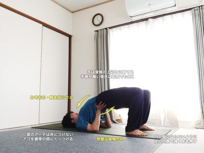 セツバンダーサナ(シヴァナンダヨガ版・橋のポーズ)〜腰を気持ち良くマッサージ、背骨と骨盤を整える〜