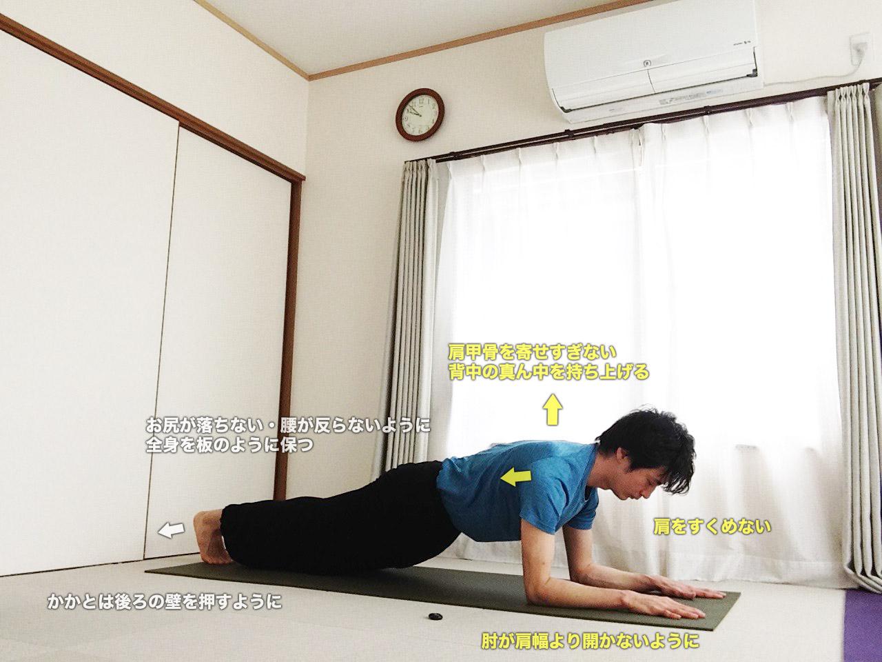 ドルフィンプランクポーズ 〜二の腕のシェイプアップ・バストアップ・肩周りの姿勢を整える〜