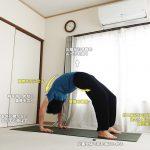 ウルドゥヴァダヌラーサナ(ブリッジ・チャクラーサナ・上向きの弓のポーズ)〜胸椎を柔軟に反らして、心を開く〜