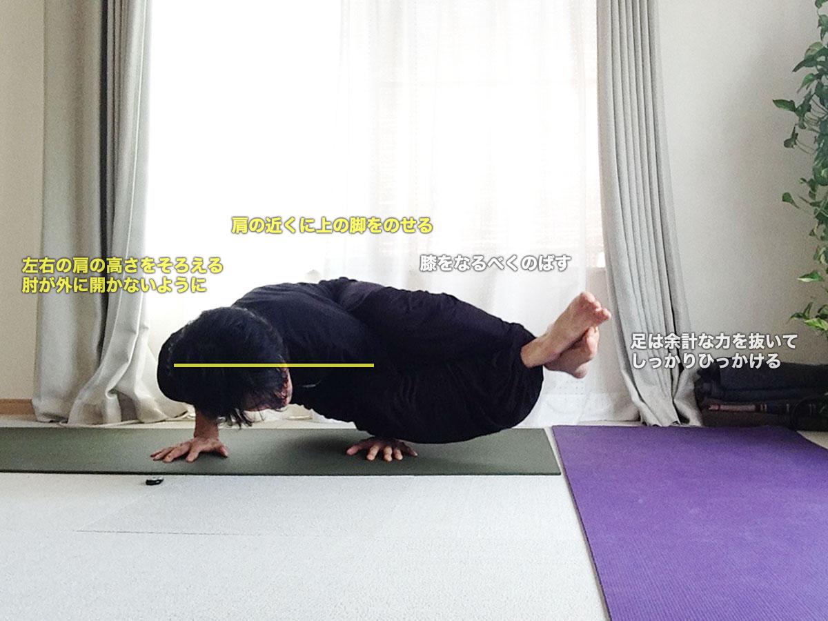 アシュタヴァクラーサナ(八曲がりのポーズ)〜肩周りの筋肉を正しく使って安定させる〜