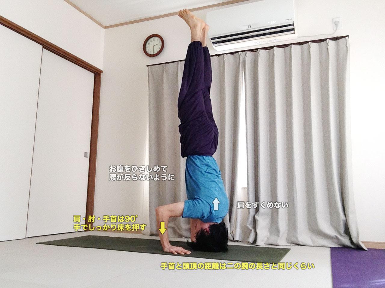 サーランバシルシャーサナⅡ(三点倒立・支えのある頭立ち)〜正しい配置の骨格で、全身を支える〜