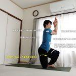 ヴァタヤナーサナ(馬のポーズ)〜股関節柔軟性とバランス感覚〜