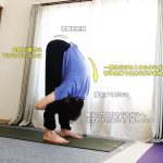 ウッティタジャーヌシルシャーサナ(腕を使った強い前屈ポーズ)〜重力・腕の力を使って、強く前屈を深める〜