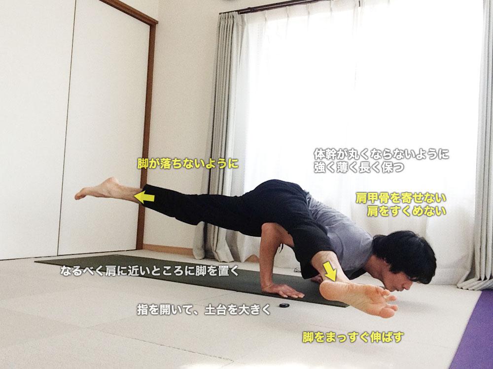 エーカパーダカウンディニャーサナⅡ〜重力に負けないよう、体幹・脚力を強化〜